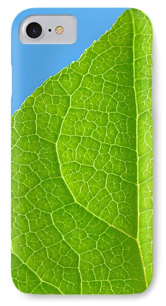 Life Of A Leaf IPhone Case by Joan Herwig