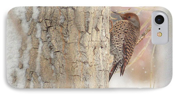 IPhone Case featuring the photograph Life Of A Northern Flicker by Al  Swasey