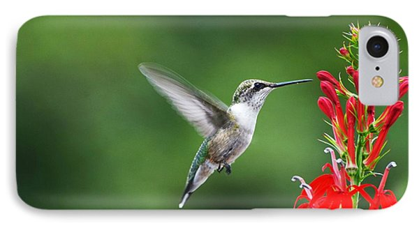 IPhone Case featuring the photograph Lifes Little Pleasure by Judy Wolinsky