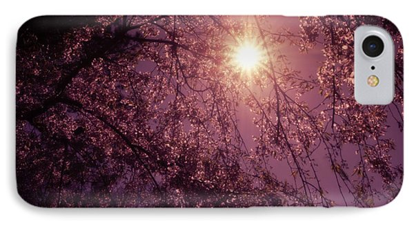 Light And Cherry Blossoms IPhone Case