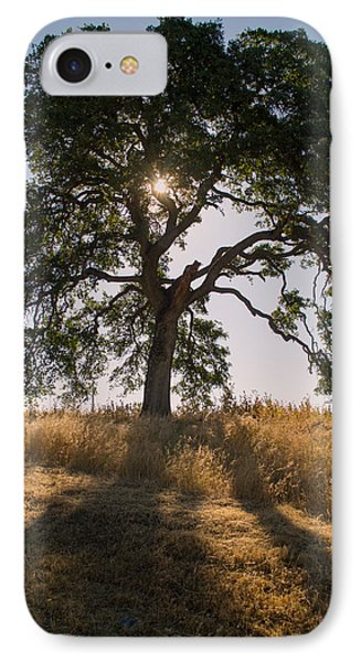 Light And Life IPhone Case
