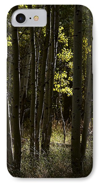 Light And  Shadows D0468 Phone Case by Wes and Dotty Weber