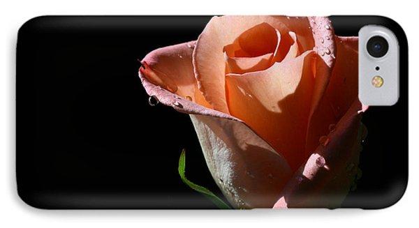 IPhone Case featuring the photograph Light Catcher by Doug Norkum