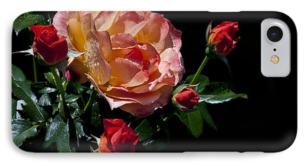 IPhone Case featuring the photograph Light Family by Doug Norkum
