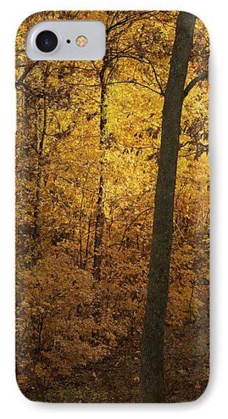 Light In The Forest IPhone Case by Jane Eleanor Nicholas