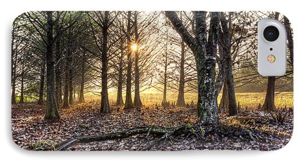 Light In The Trees Phone Case by Debra and Dave Vanderlaan