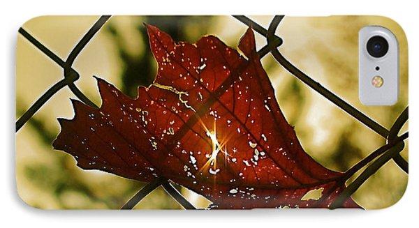 Light Leaf Links IPhone Case by Rona Black
