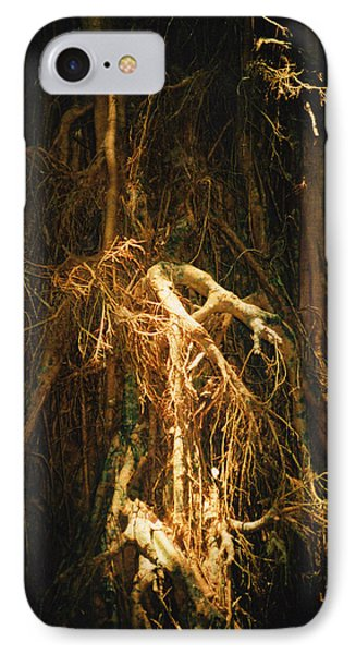 IPhone Case featuring the photograph Light Roots by Evelyn Tambour