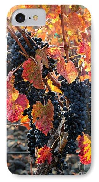 Light Through Fall Vineyard Phone Case by Carol Groenen