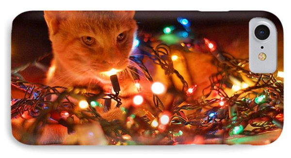 Lighting Up The Christmas Cat IPhone Case by Lynda Dawson-Youngclaus