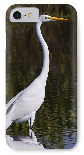 Like A Great Egret Monument Phone Case by John M Bailey