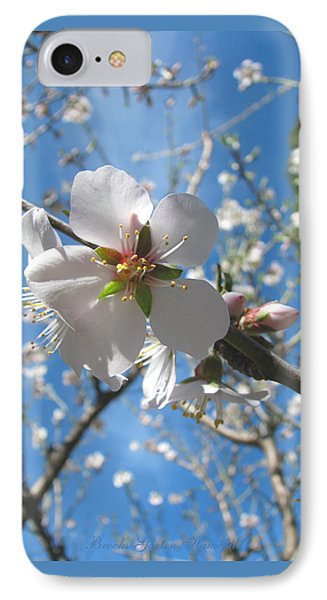 Like Stars In The Sky - Almond Blossoms Of Spring IPhone Case by Brooks Garten Hauschild