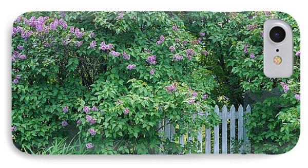 Lilac Season IPhone Case by Alan L Graham
