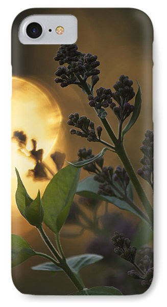 Lilacs At Sunset IPhone Case by Penny Meyers