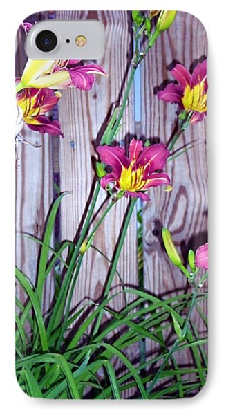 Lilies Against The Wooden Fence IPhone Case by Danielle  Parent