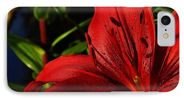 Lilies By The Water Phone Case by Randy Hall