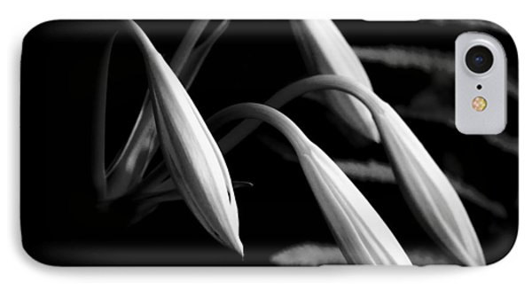 Lilies Of The Marsh B/w IPhone Case by Marvin Spates