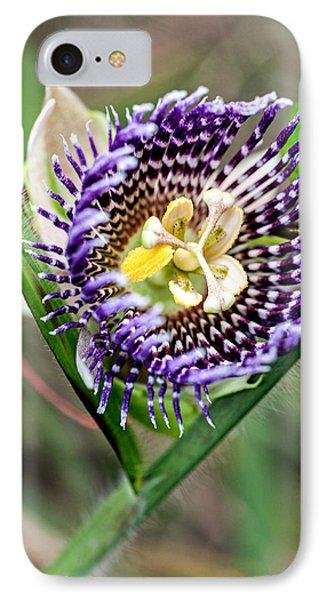 Lilikoi Flower IPhone Case by Dan McManus