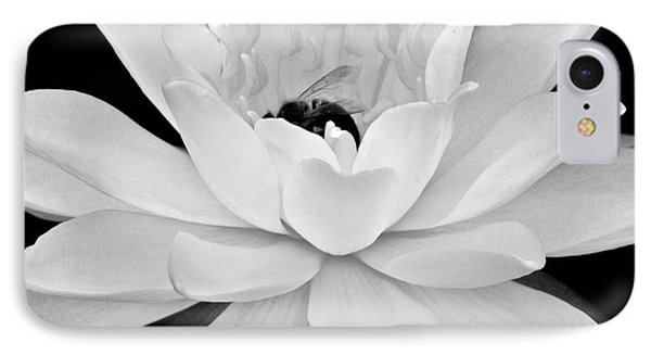 Lilly White Phone Case by Frozen in Time Fine Art Photography