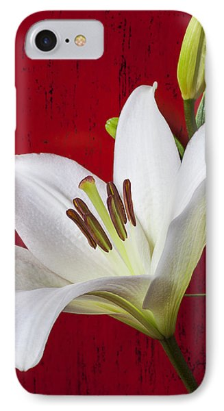Lily Against Red Wall IPhone Case by Garry Gay