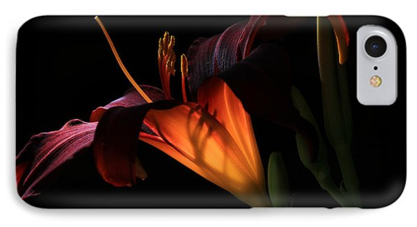 Lily Ambiance IPhone Case by Donna Kennedy
