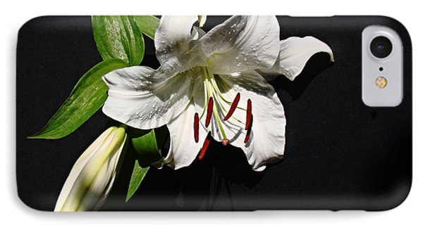 IPhone Case featuring the photograph Lily At Daybreak by Nick Kloepping