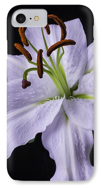 Lily Beauty IPhone Case by Garry Gay