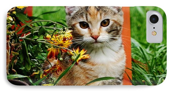 IPhone Case featuring the photograph Lily Garden Cat by VLee Watson