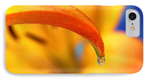 Lily In A Dew Drop IPhone Case by Pattie Calfy