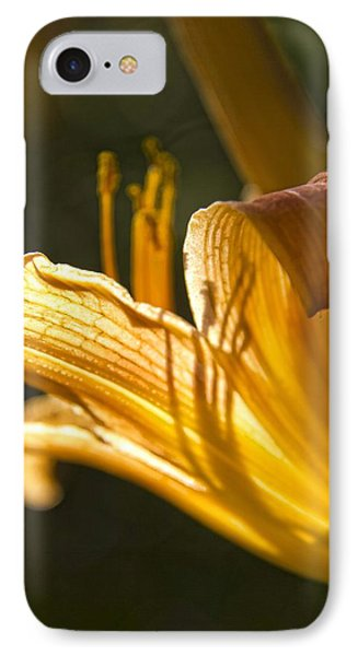 Lily In The Yard IPhone Case