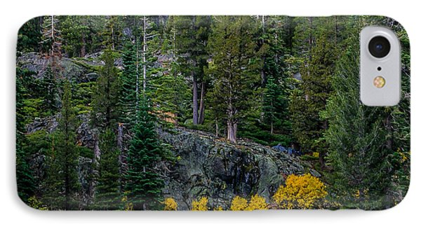 Lily Lake Autumn Phone Case by Mitch Shindelbower