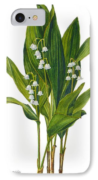 Lily Of The Valley - Convallaria Majalis IPhone Case by Janet  Zeh