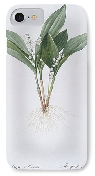Lily Of The Valley IPhone Case by Pierre Joseph Redoute