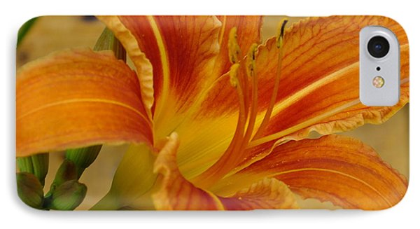 IPhone Case featuring the photograph Lily On Pine by Gene Cyr