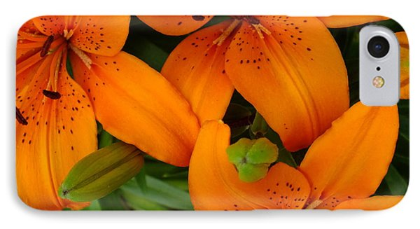 IPhone Case featuring the photograph Lily Orange by Gene Cyr