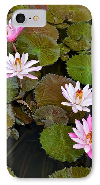 Lily Pad Haven Phone Case by Frozen in Time Fine Art Photography