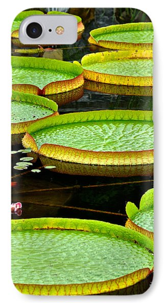 Lily Pad Pond IPhone Case by Frozen in Time Fine Art Photography