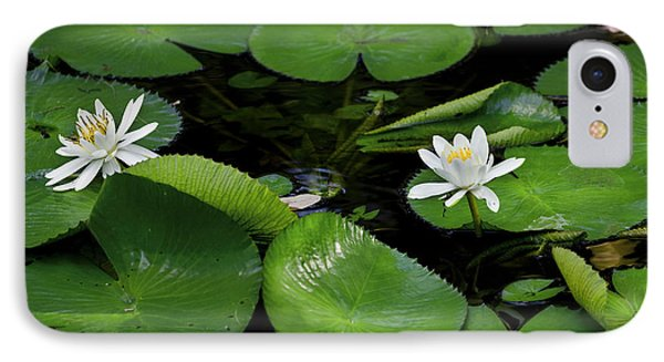 Lily Pads And Blossoms Phone Case by Rich Franco