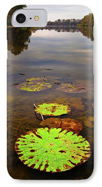 Lily Pads Decay In Fall Phone Case by Steven Llorca