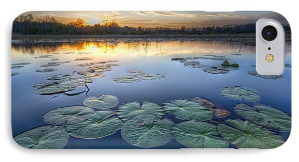 Lily Pads In The Glades Phone Case by Debra and Dave Vanderlaan