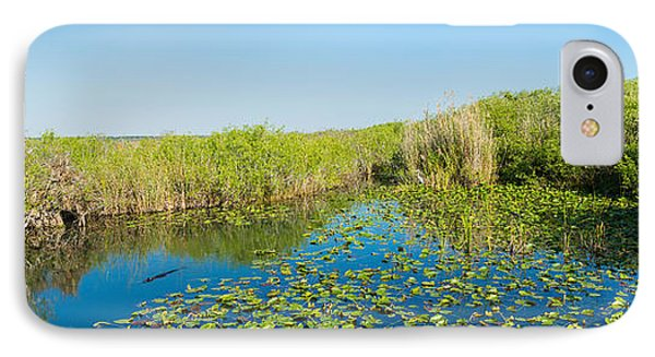 Anhinga iPhone 7 Case - Lily Pads In The Lake, Anhinga Trail by Panoramic Images