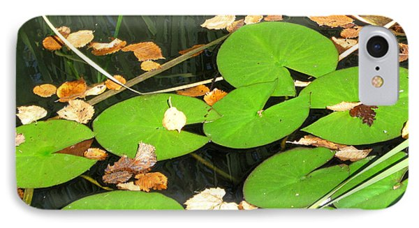 Lily Pads IPhone Case by Mary Bedy