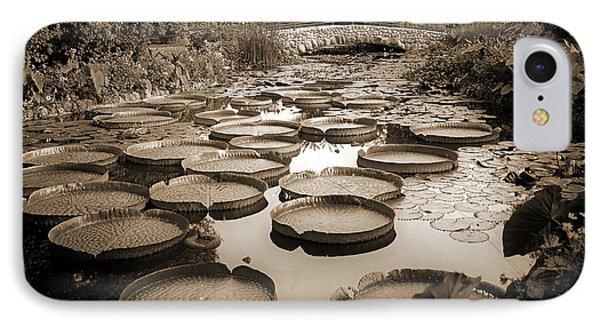 Lily Pond, Como Park IPhone Case