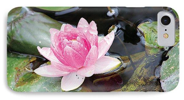 Lily Pond IPhone Case by Susan Schroeder
