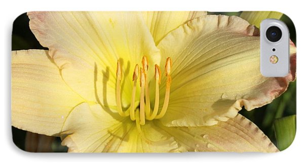 Lily Square IPhone Case