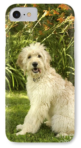 Lily The Goldendoodle With Daylilies Phone Case by Anna Lisa Yoder