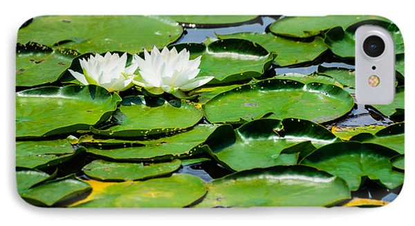 Lily Pads IPhone Case by Alan Marlowe