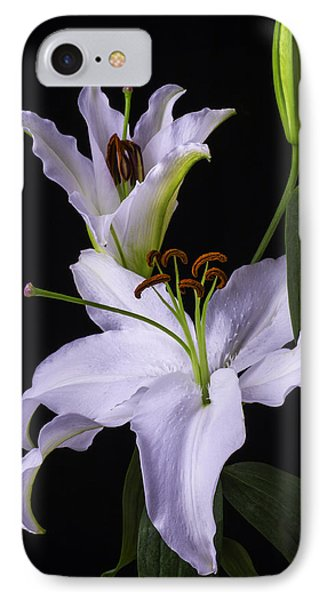 Lily's In Bloom IPhone Case by Garry Gay
