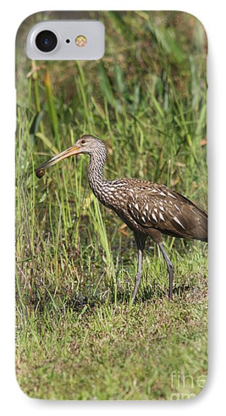 Limpkin With Apple Snail IPhone Case by Christiane Schulze Art And Photography