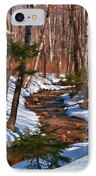 Lincoln Woods Trail IPhone Case by Sharon Seaward